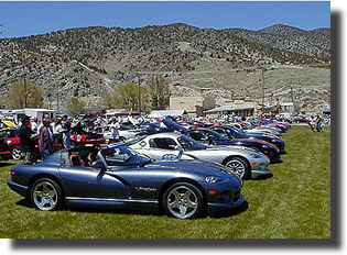 Vipers as far as the eye can see.