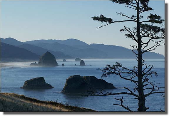 Cannon beach - one of Oregons many scenic beaches.